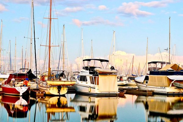 Accommodation-in-manly-Harbour